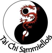 COURS DE TAI CHI / QI GONG