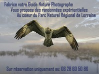 SORTIES NATURE AVEC FABRICE ANDRE