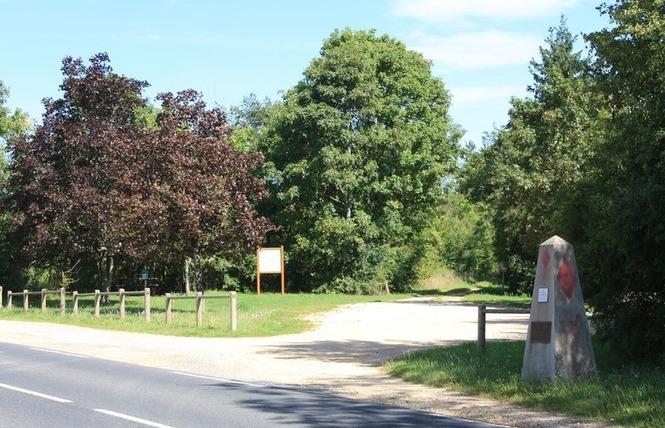 MONUMENT DE LA 5ÈME DIVISION AMERICAINE 1 - Thiaucourt-Regniéville