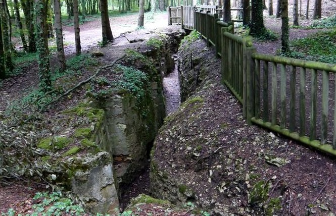 TRANCHEES DE BOIS BRULE ET CROIX DES REDOUTES 1 - Apremont-la-Forêt