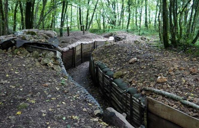TRANCHEES DE BOIS BRULE ET CROIX DES REDOUTES 2 - Apremont-la-Forêt