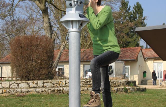 RESERVE NATURELLE REGIONALE DE L'ETANG DE LACHAUSSEE 3 - Lachaussée