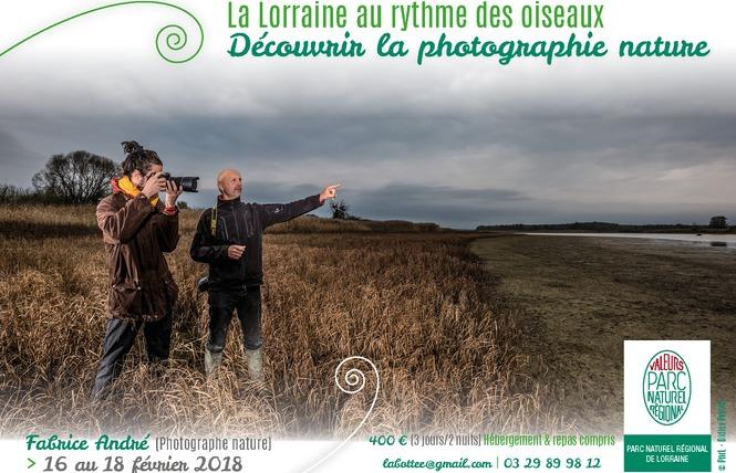 LA LORRAINE AU RYTHME DES OISEAUX DECOUVRIR LA PHOTOGRAPHIE NATURE 1 - Vigneulles-lès-Hattonchâtel
