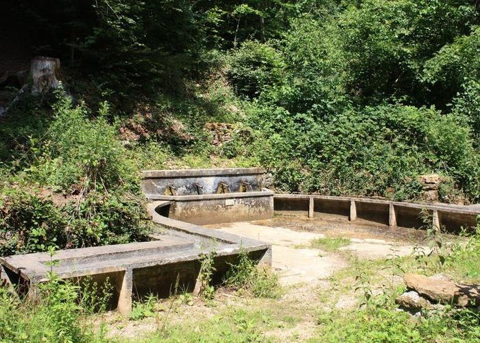 Fontaine des 4 goulots Vilcey sur Trey - CCL-800x600-1.JPG